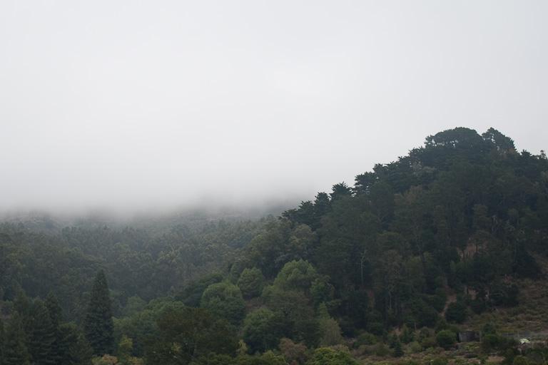 Nebel auf den Hügeln