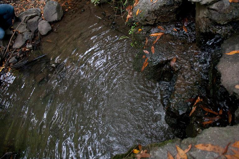 Wasser, das aus einem Düker in einen Teich fließt